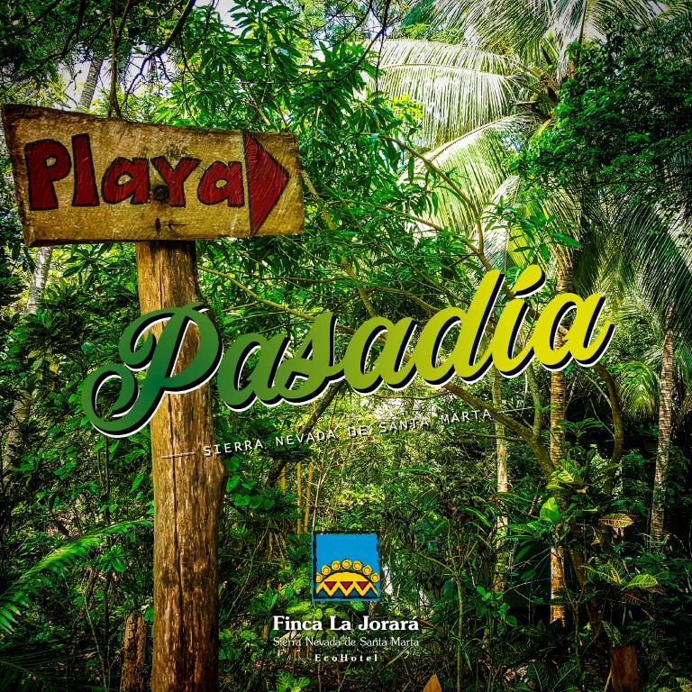 Pasadia Finca La Jorara entre Parque Tayrona y Palomino